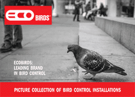 ECOBIRDS®: Download Brochure